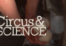 Circus & Science: About Balls and the Brain
