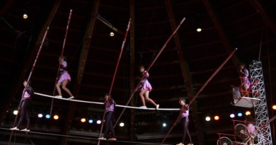 With A Net: Insurance for the Circus Arts