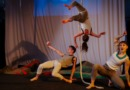 Molding the Next Generation of Circus Directors at Circomedia