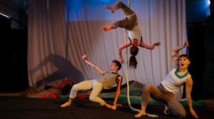 Molding the Next Generation of Circus Directors at Circomedia
