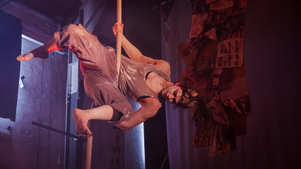 Circomedia MA circus program for directors
