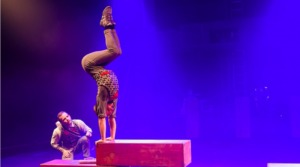 Penny Miles Appointed As Circus Oz Executive Director