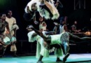 Spotlight Africa: Ivory Coast's Popular Circus Festival Expands Its Reach