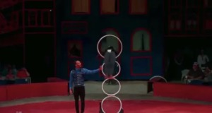 <em>MOVE IT!</em> Episode 7 – Circus Harmony