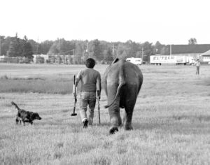 A man and an elephant walk side by side away from the camera, depicted in black and white
