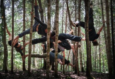 Circus artists hang from the trees, imitating spiders