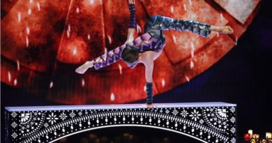 Circus Immersion: Contortion or the Human Body in All Its Simplicity