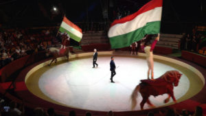 The Circus Returns to Budapest as Hungary Reopens Live Venues