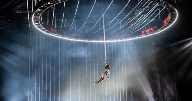 Alchemy and Poetry in Circus Days and Nights