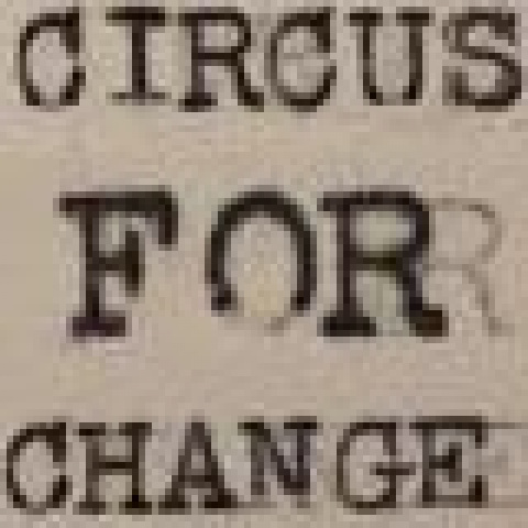 Circus For Change - Organization - United States - CircusTalk