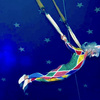 Aerial Bungee - Circus Acts - CircusTalk