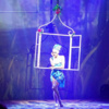 Aerial Window - Circus Acts - CircusTalk